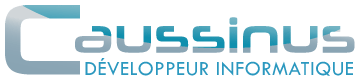 Caussinus - Developpeur Informatique